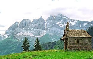 "Alpine Wines  |  ""Dents du Midi"""