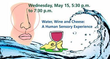 Water, Wine and Cheese: A Human Sensory Experience