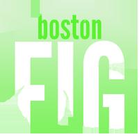 BostonFIG 2013 Press Registration