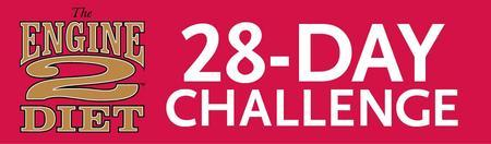 28 Day Engine 2 Challenge