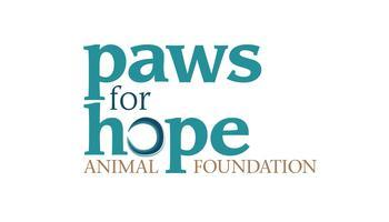 Rock For Paws