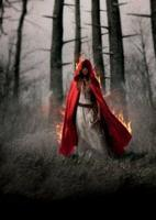 Falling by Sarita Plowman