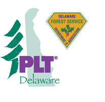 DELAWARE'S FORESTS SERVING DELAWARE'S FAMILIES...
