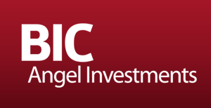 BIC ANGEL INVESTMENTS' IZMIR PITCHING WORKSHOP