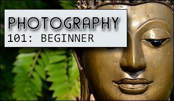 """Photography 101 Workshop: """"The Basics"""""""