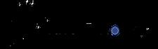 Bravo Discovery - English logo