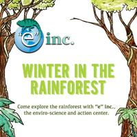 Winter In the Rainforest