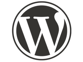 Advanced Wordpress with WP co-founder Mike Little