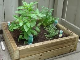 Planning, planting and maintaining your new raised bed...