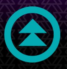 Northern Nights Music Festival logo