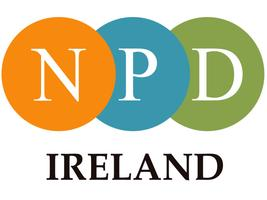 New Professionals Day Ireland Christmas Mixer