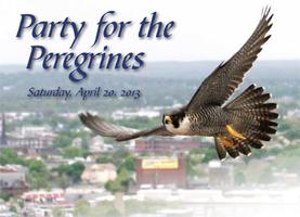 Party for the Peregrines