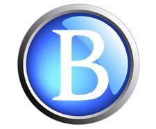 Team Bogies logo