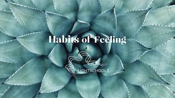 Habits of Feeling 1
