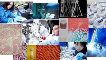 Industry Workshop 2015