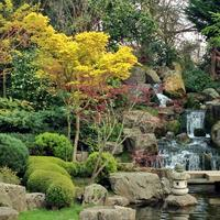 The Holland Park Walking Tour