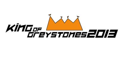 King of Greystones Charity Triathlon 2013