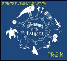 Summer Camp: Forest Animals Week (4-6 year old)