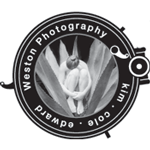 May 1-3, Weston Photography Wildcat Studio Figure...