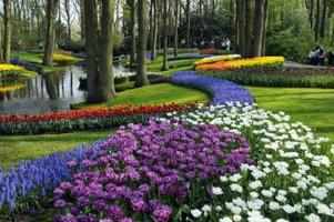 Keukenhof Spring Gardens (fully booked, see Sunday 3...