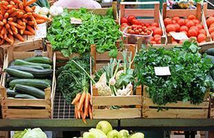 6º Taller: Verduras, pickles y germinados