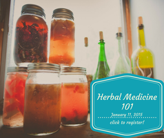Basic Herbal Medicine 101