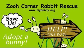 Elderly & Disabled Rabbits - Part 2