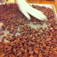 MONDAY: Mast Brothers Factory Tour and Chocolate...
