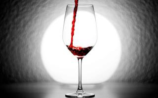 2015 ILS Wine Tasting and Silent Auction Fundraiser