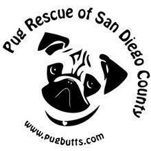 Pug Rescue of San Diego County logo