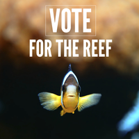 Queensland State Election 'Vote for the Reef' Forum