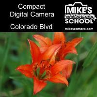 Compact Digital Camera- Denver
