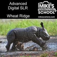 Advanced Digital SLR- Wheat Ridge