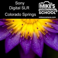 Sony Interchangeable Lens Cameras- Colorado Springs