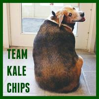 Team Kale Chips Yoga Fundraiser