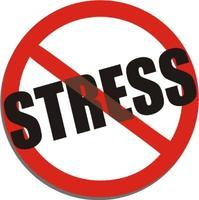 Stress and Anxiety Care Workshop