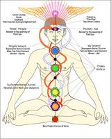 Chakra Healing Experience 29 November