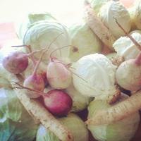 Wild Vegetable Fermentation Workshop