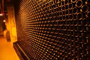 Grand Wine Tasting Exclusive Motor Coach Ride