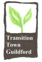 Transition Town Guildford Sustainable Homes Group -...