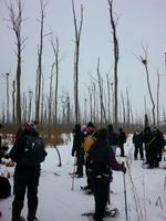 Snowshoe with the Friends of Minesing Wetlands