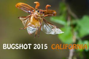 BugShot California 2015