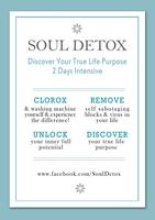Soul Detox : Peace, Love, Happiness, Clarity &...