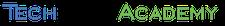 TechSoft Academy logo