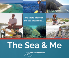 'My Saltwater Sanctuary' and 'The Sea & Me' - Huskisson