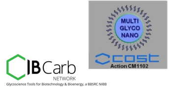 COSTCM 1102/IBCarb Synthesis for nano- and...