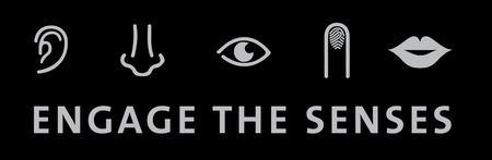 Engage the Senses