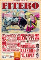 Feria Taurina de Fitero 2013