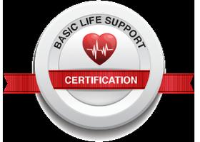Healthcare Provider CPR (BLS)