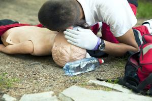 Basic Adult First Aid/CPR/AED Certification plus...